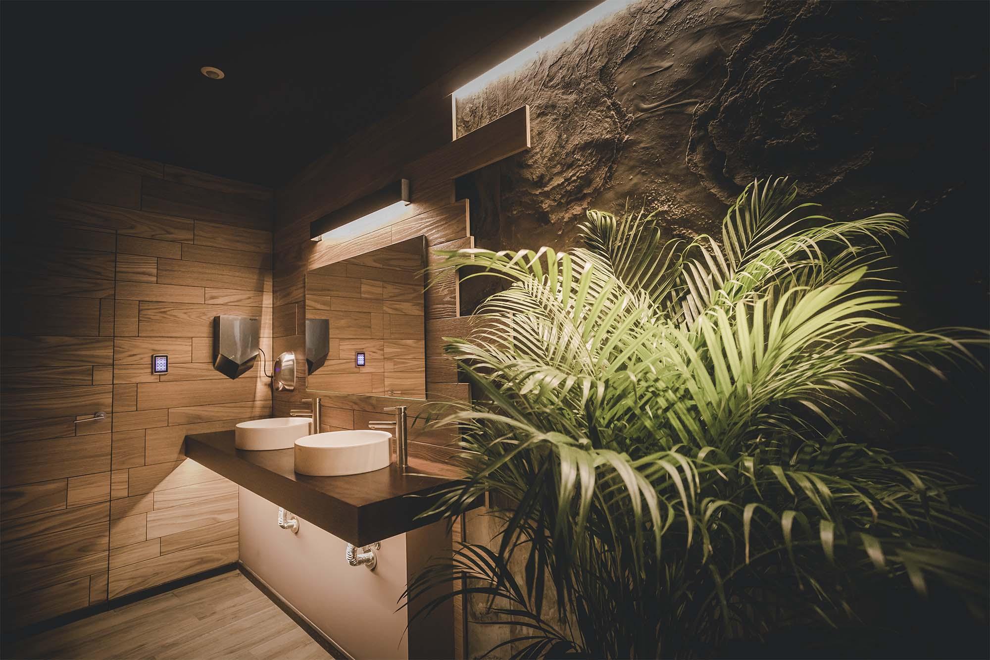 baña 2